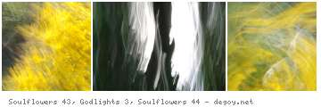 Soulflowers 43, Godlights 3, Soulflowers 44